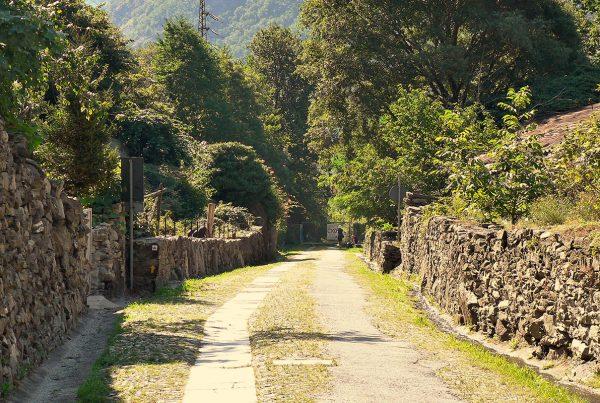 La Via Francigena, un cammino laico