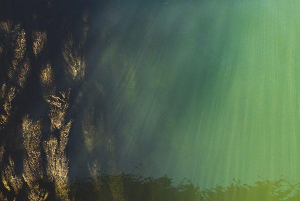 """Rino Regoli: Luce, acqua e riflessi. La forma e il colore nello """"specchio di Alice"""""""