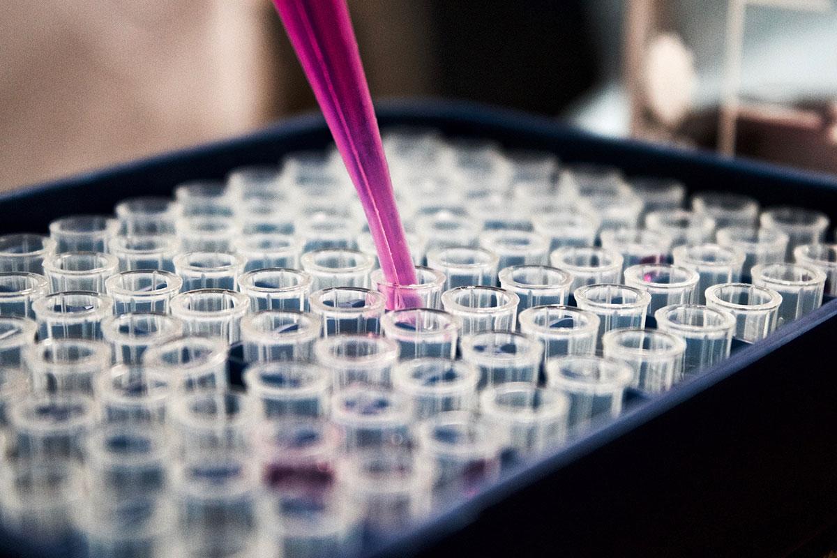 Bioetica secondo autonomia e responsabilità morale dell'individuo. Colloquio con Eugenio Lecaldano