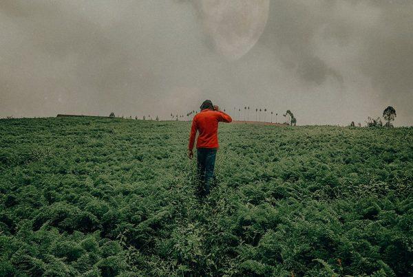 Southern: Daños ambientales, muertes y paro de agricultores
