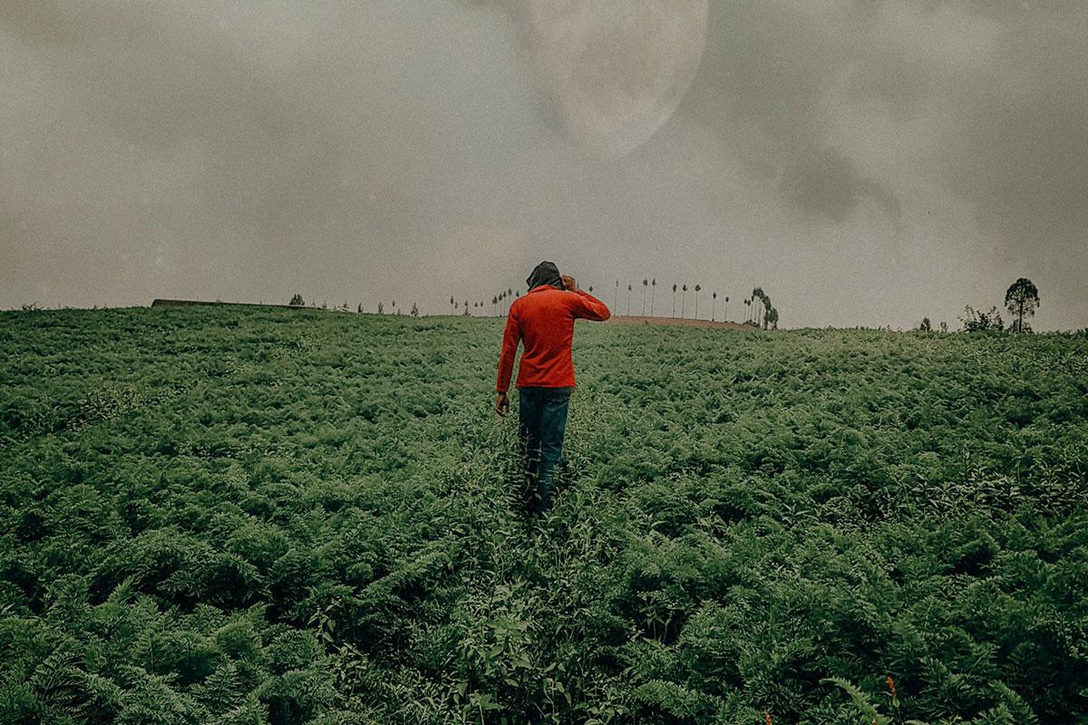 Southern: Daños ambientales, muertes y paro de agricultores – Conflicto socio-ambiental genera división de peruanos