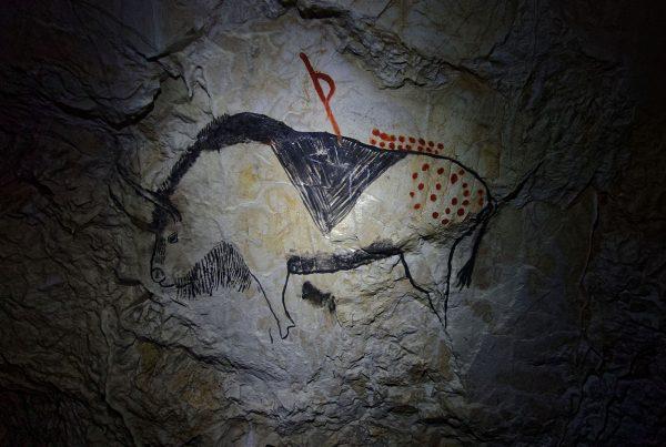 Il lungo cammino dei nostri antenati