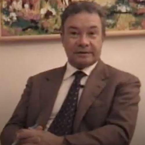 Vincenzo Cerulli Irelli